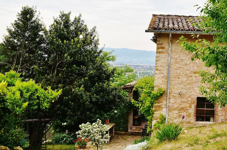 Stupendo Bed & Breakfast nel verde di Assisi! - Province of Perugia
