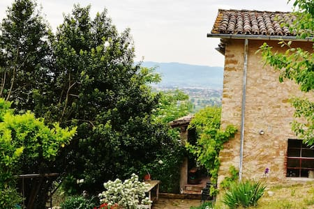 Green pause in Assisi's country home. - Province of Perugia - Bed & Breakfast