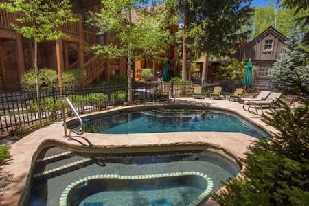 Stunning 1BDRM In Aspen Core - Aspen - Apartment