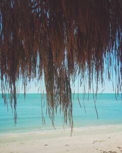 Studio -beach nature relax