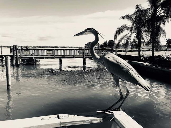 Ole Florida Key Style