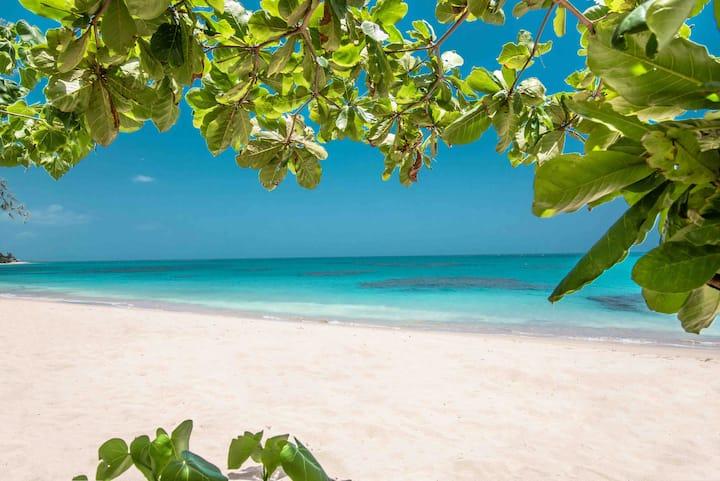 🏖 Aquatika Beach Resort w/KingBed+WiFi+TV+AC