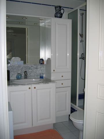 The second bathroom, privately accessible from the second bedroom.