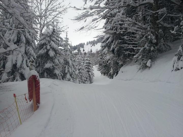 Studio à la montagne aux pieds des pistes de ski