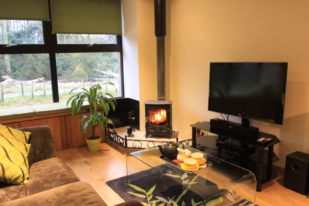 Comfy sitting area with woodburning stove, Sky TV and woodland views