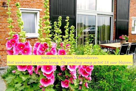 terras/tuin/nabij zee/rustig/D - Schoondijke - Huoneisto