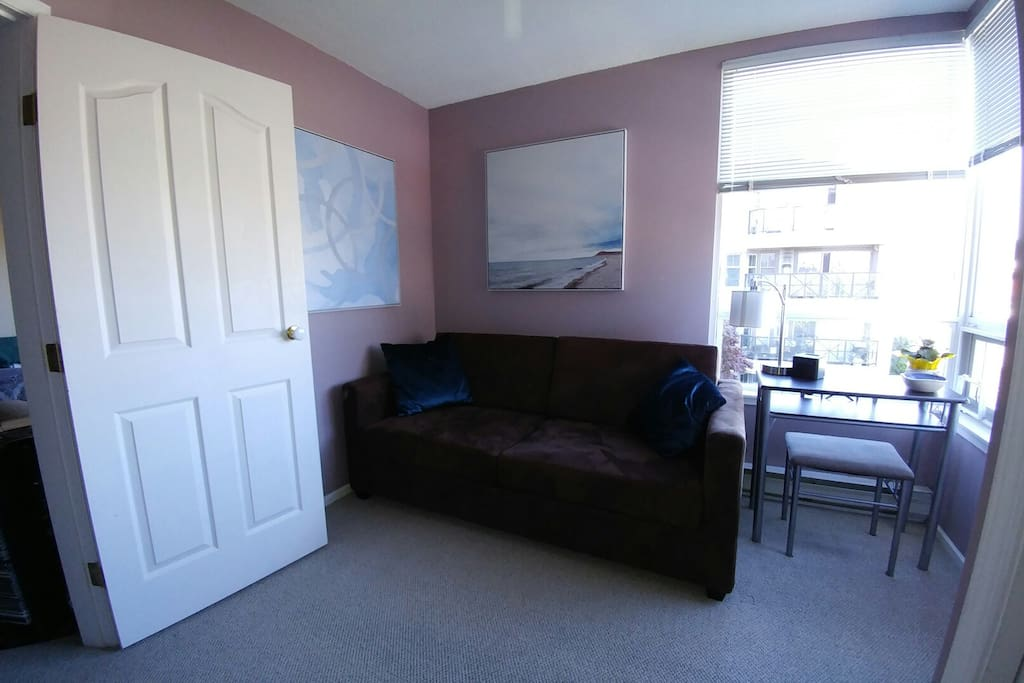 Downtown Shared Two Bedroom Condo With Cat Apartments For Rent In Victoria British