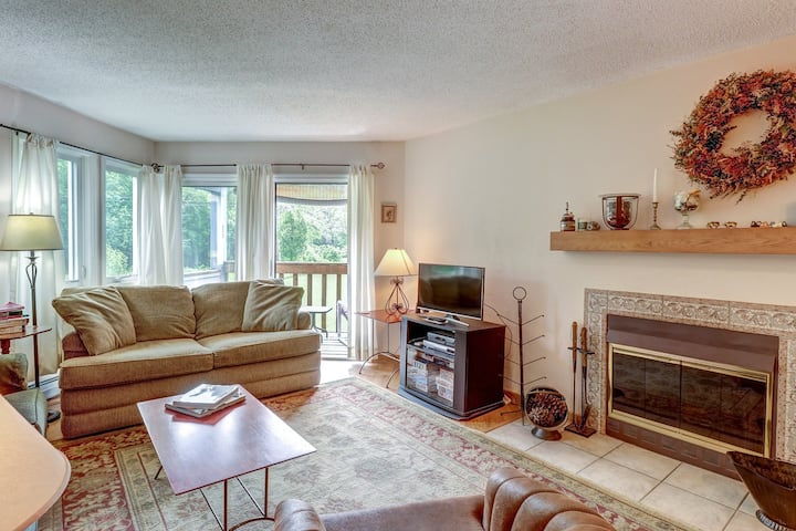 Comfortable, dog-friendly ski condo w/ shared seasonal pool, on shuttle route!