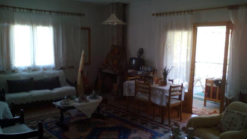 Σπιτι σε χωριο της Βεροιας.ιδανικο για αποδραση - Veria - Dům