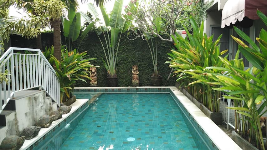 A Loft Apartment #8 w/ shared pool in Denpasar