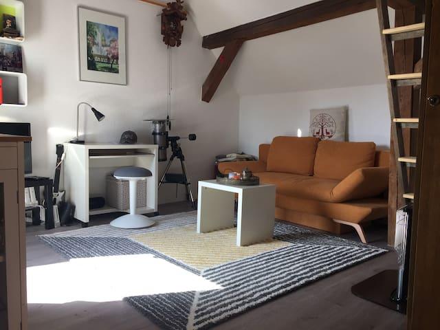 Urige Scheune auf dem Land mit Hornisgrindeblick - Achern - Apartment