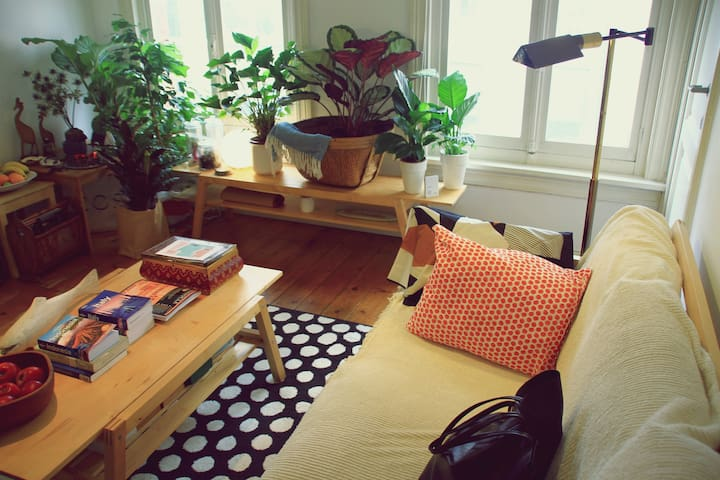 Eco-Traveller's Loft