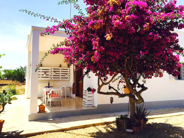 Peace&Love house in the heart of natural Ibiza - Santa Eulària des Riu - Rumah