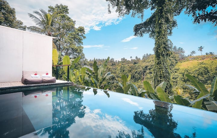 Valley Villa with Private Pool @Amora Ubud