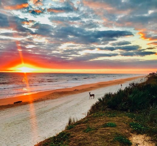 Flagler Beach Apartment with Sunrise View