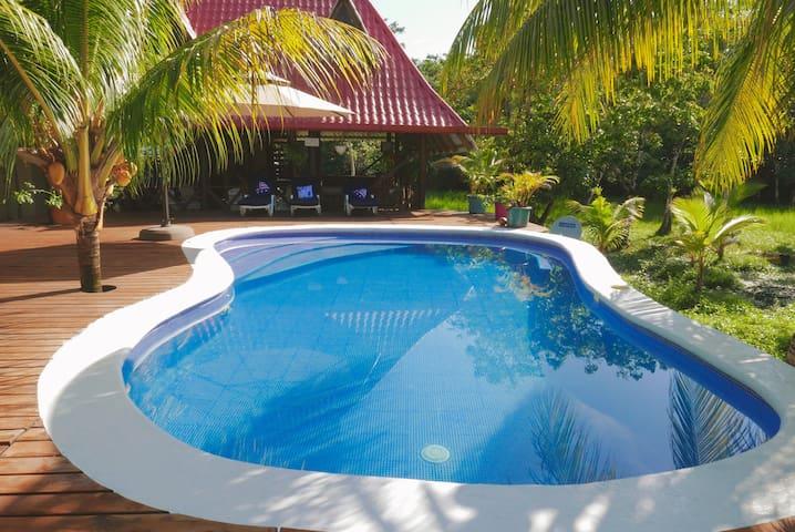 Al lado de la piscina se encuentran tumbonas (sillas de piscina) para poder relajarse.