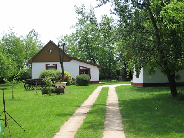 "Typical hungarian farm ""Tanya"" - Kiskunmajsa - House"