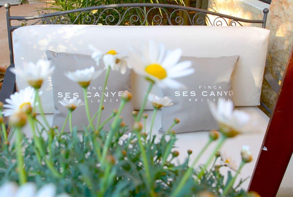 Can Tuto suite garden