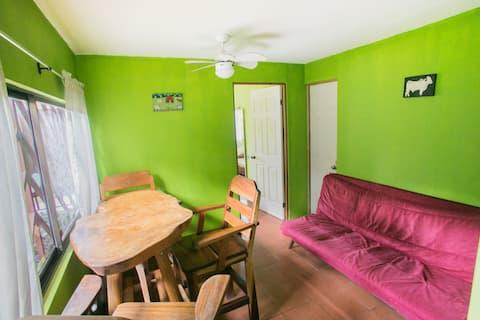Manuel Antonio Hills, Apartment( El Lagarto)