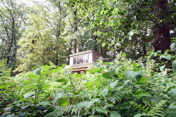 Outstanding tiny house in the middle of the woods