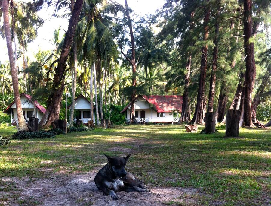 bungalows & gardens