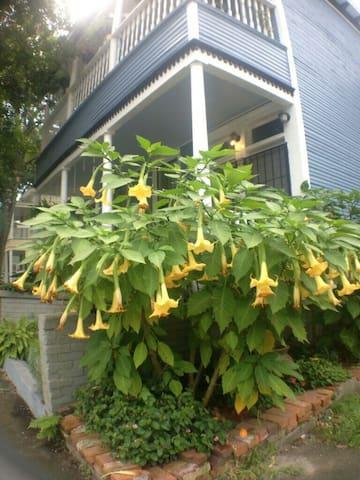 Trumpet Garden Apartment