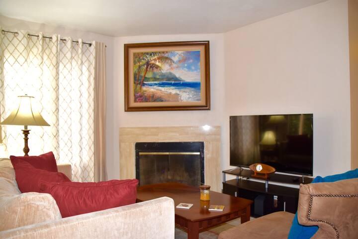 Living Room w/ TV & Fireplace