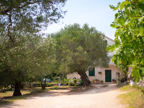 Spacious Apartment In An Olive Grove Estate