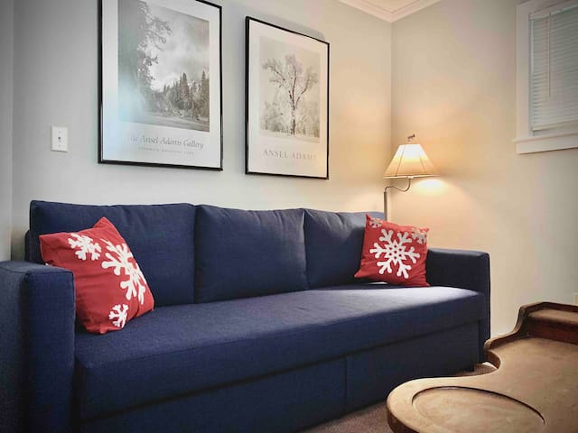 Den with a pull out sleeper sofa