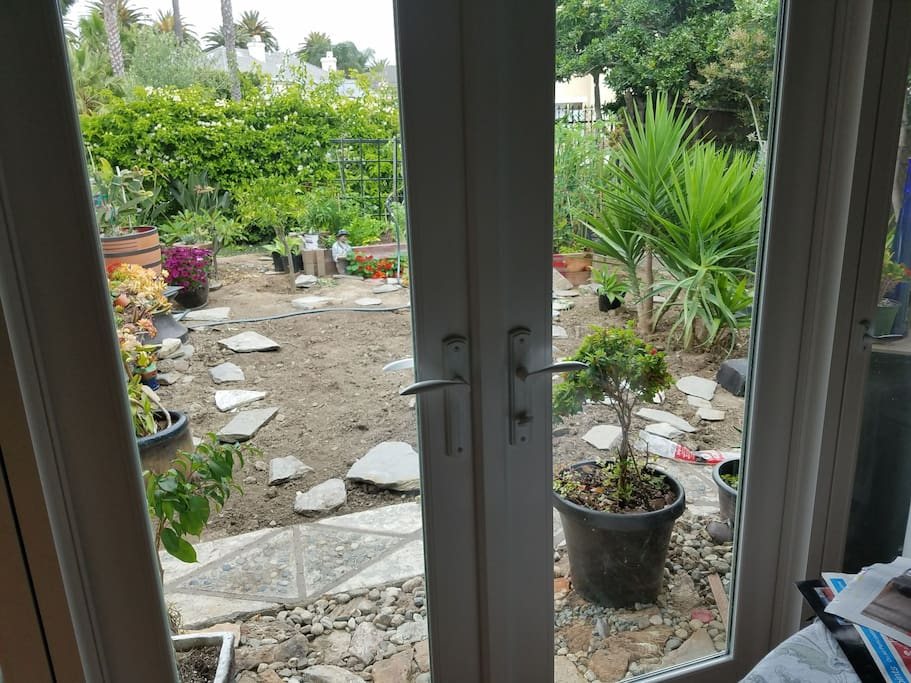 Looking out from the breakfast nook