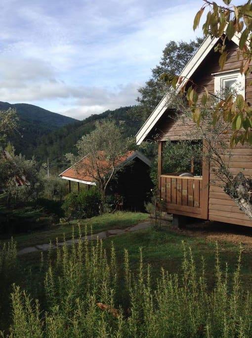 exterior cabaña tres