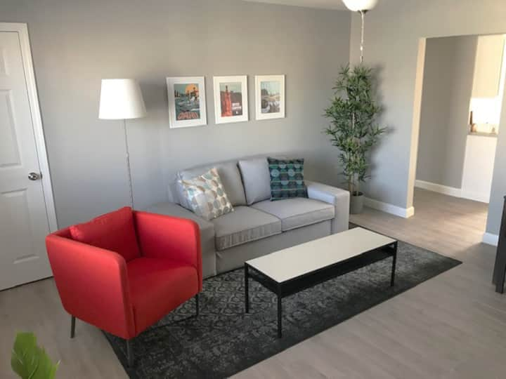 Newly renovated, solar 2 BR near Bradley (Apt. D)