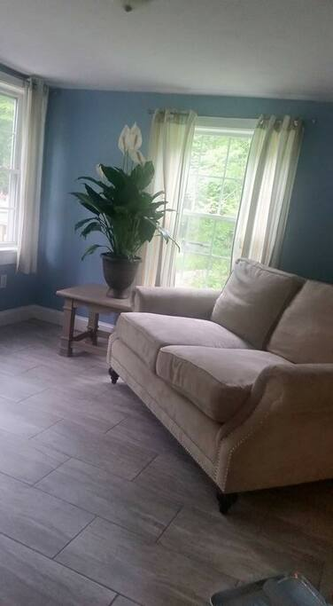 Sun room with a pullout full size couch