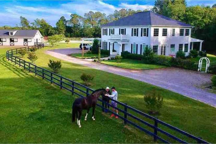 Gorgeous Horse Farm Barn Apt Near Bruce's Field