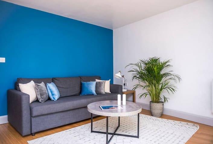 Spacious 1 bedroom Apartment Zone 1