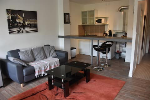 CHARMANT STUDIO DE 31M2 A NANCY - TOUT INCLUS