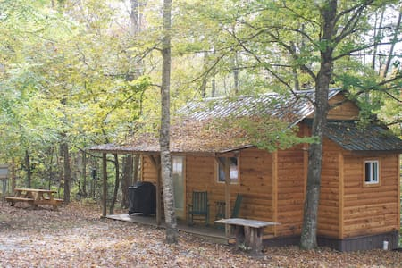 Forest Cabin at Sinking Creek - London - 小木屋