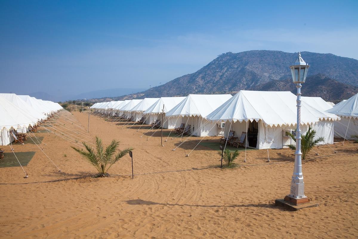 Tents Tents & Enjoy Breathtaking views of Pushkar - Tents for Rent in Ganaheda ...