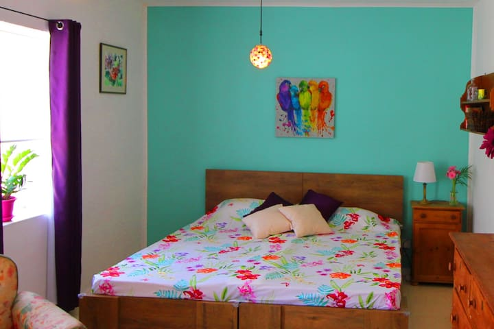 The guestroom set up with a large double bed.