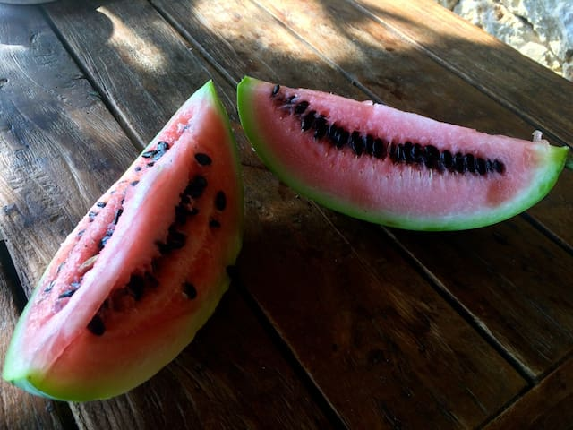 natural local watermelon from our neighbours