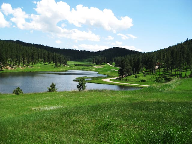 Best of the Black Hills Lake Side Property
