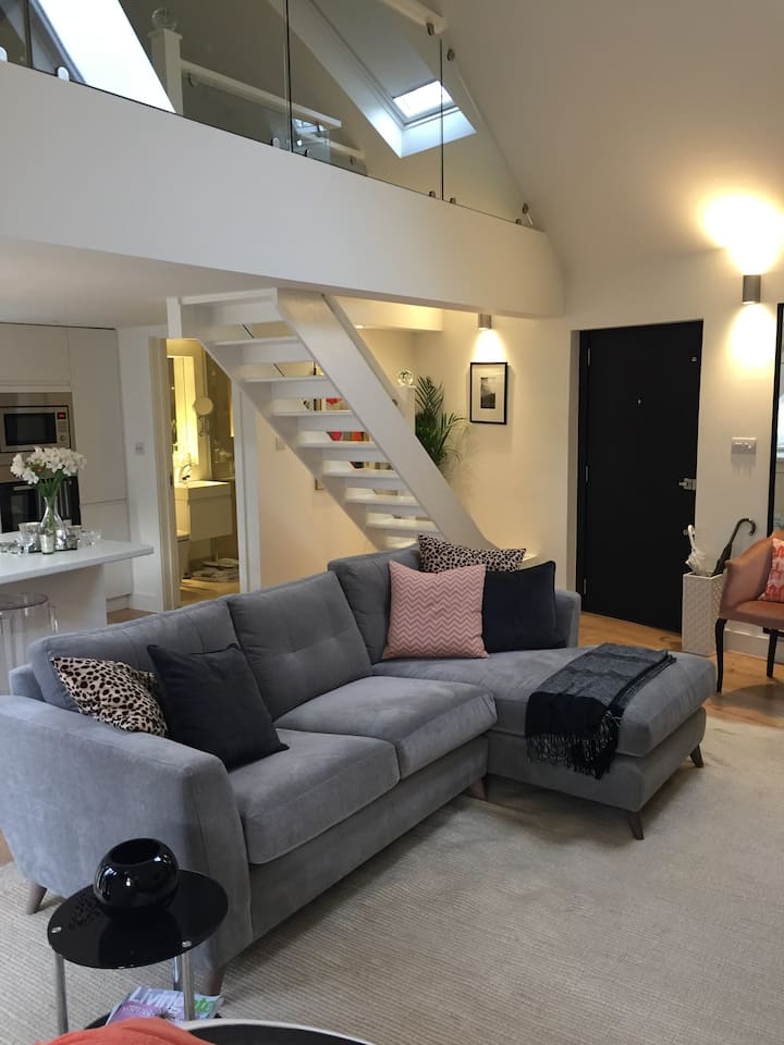 Stunning contemporary living in East Sheen