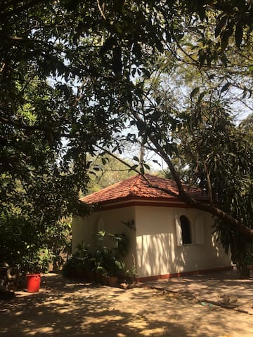 Studio Room in a tranquil location - Pune - Apartamento