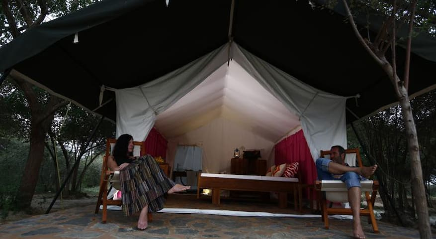 Yala Camping - Yala - เต็นท์
