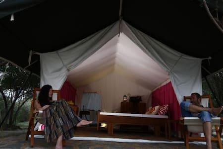 Yala Camping - Tenda de campanya