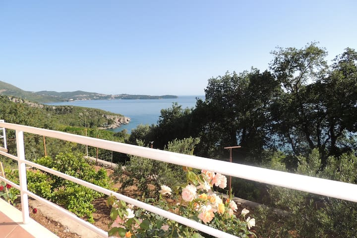 Villa Barbara- Studio with Sea View for two adults - Mlini - Daire