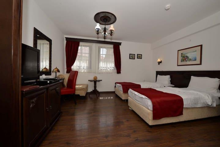 Villa Mal Sveti Kliment- Budget