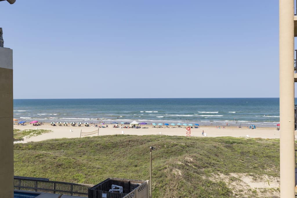 south padre island muslim singles Discover 44 apartments & houses for rent available in south padre island, tx browse all or search & filter by price, amenities, pets and more.