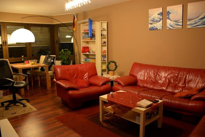 Nice Apartment in central Heidelberg - Heidelberg - Flat