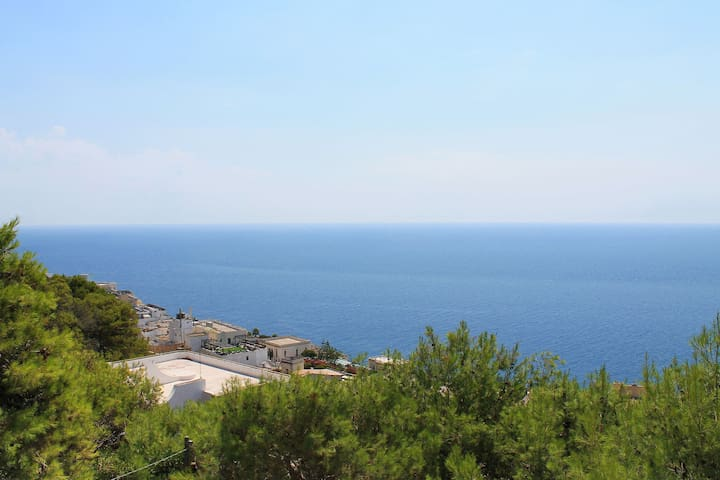 281 House with Sea View - Santa Cesarea Terme - วิลล่า
